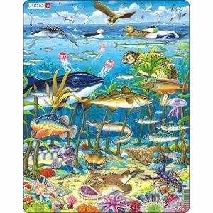 Larsen Puzzle Zvířata v  moři, 60 dílků