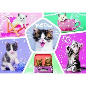 Trefl Puzzle Roztomilá koťata, 200 dílků